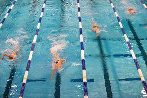 Wettkampfschwimmen
